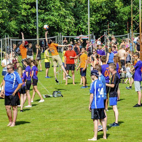 ledub volleybal festival overzicht